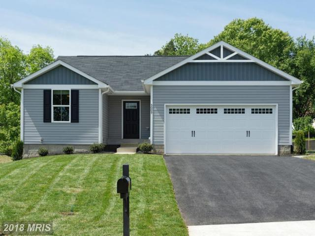 0002 Taylors Hill Way, Fredericksburg, VA 22405 (#ST10127900) :: The Gus Anthony Team