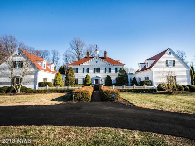 2247 Courthouse Road, Stafford, VA 22554 (#ST10129030) :: Pearson Smith Realty