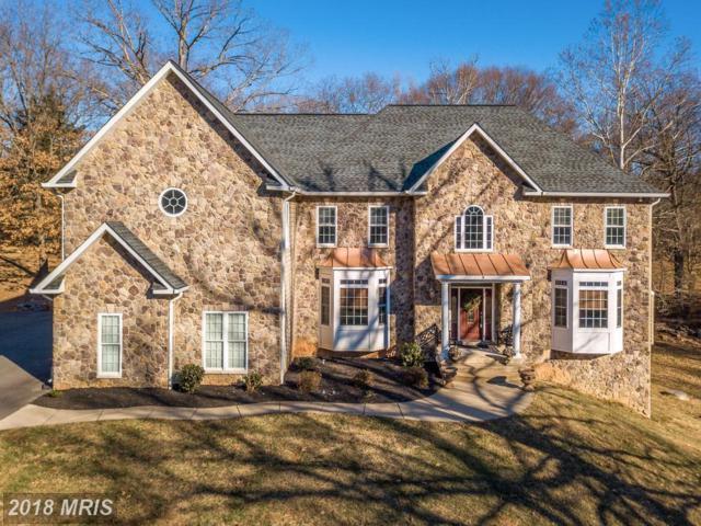 3 English Hills Drive, Fredericksburg, VA 22406 (#ST10129687) :: Pearson Smith Realty