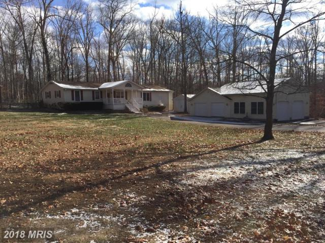 87 Eley Road, Fredericksburg, VA 22406 (#ST10129880) :: Pearson Smith Realty