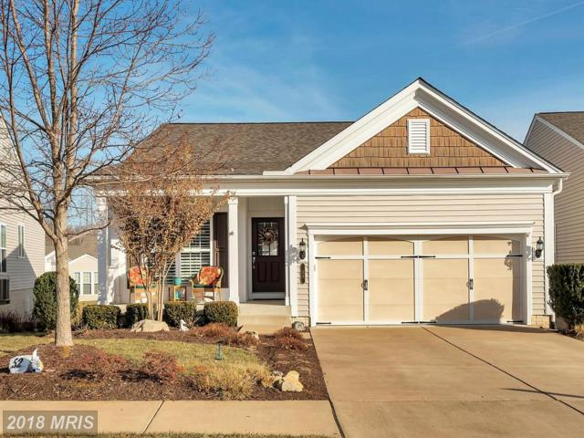 52 Table Bluff Drive, Fredericksburg, VA 22406 (#ST10130317) :: Pearson Smith Realty