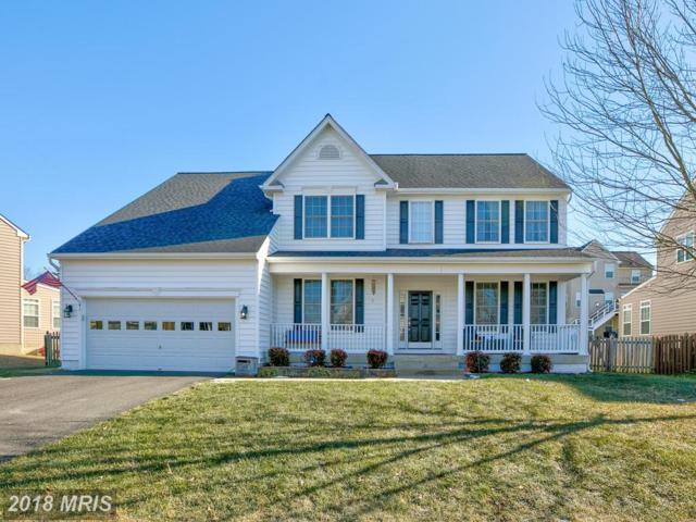 41 Banner Spring Circle, Stafford, VA 22554 (#ST10130702) :: Pearson Smith Realty