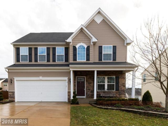 9 Warbler Court, Stafford, VA 22554 (#ST10134470) :: Pearson Smith Realty