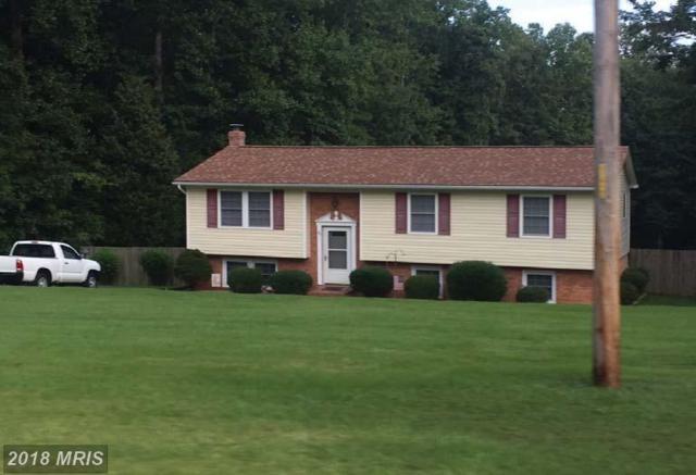 94 Richland Road, Fredericksburg, VA 22406 (#ST10134849) :: Colgan Real Estate