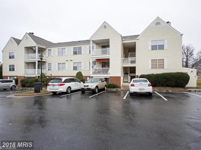 202 Dover Place #203, Stafford, VA 22556 (#ST10136071) :: Pearson Smith Realty