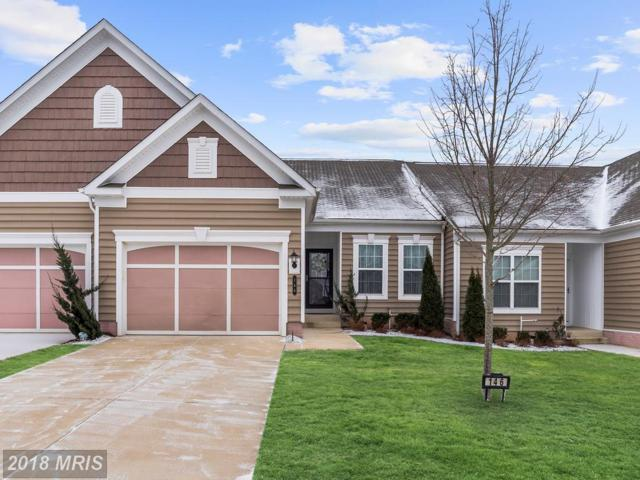 146 Castle Hill Drive, Fredericksburg, VA 22406 (#ST10138248) :: United Real Estate Premier