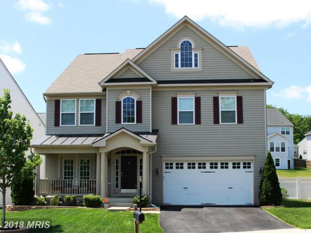 43 Trail Ridge Lane, Fredericksburg, VA 22405 (#ST10138425) :: Browning Homes Group