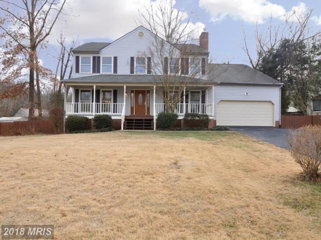 3202 Aquia Drive, Stafford, VA 22554 (#ST10139798) :: The Nemerow Team