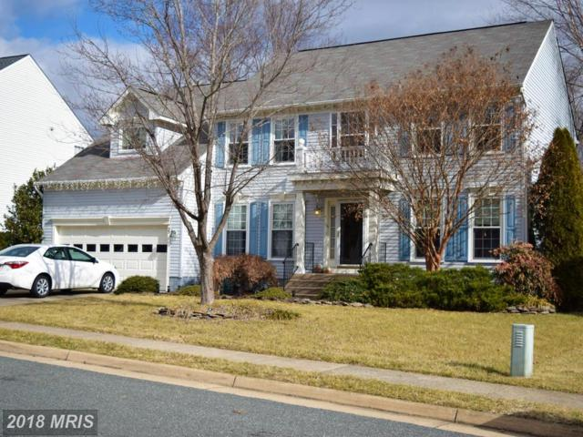 33 Saint Roberts Drive, Stafford, VA 22556 (#ST10142202) :: The Gus Anthony Team