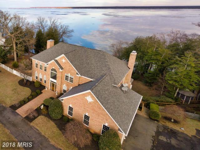 17 Potomac Overlook Lane, Stafford, VA 22554 (#ST10156250) :: The Gus Anthony Team