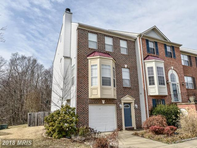 210 Dundee Place, Fredericksburg, VA 22405 (#ST10158271) :: Green Tree Realty