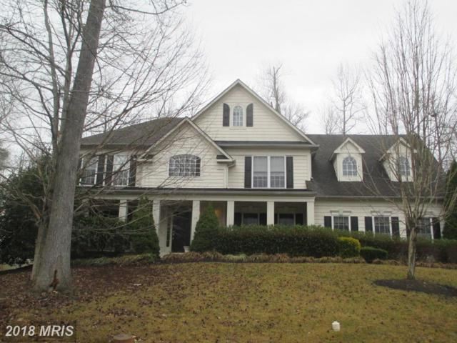 43 Muster Drive, Stafford, VA 22554 (#ST10158481) :: The Bob & Ronna Group