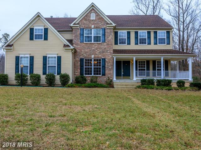 53 Piney Hill Lane, Fredericksburg, VA 22406 (#ST10158727) :: Green Tree Realty