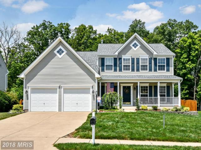 50 Chadwick Drive, Stafford, VA 22556 (#ST10159079) :: The Gus Anthony Team