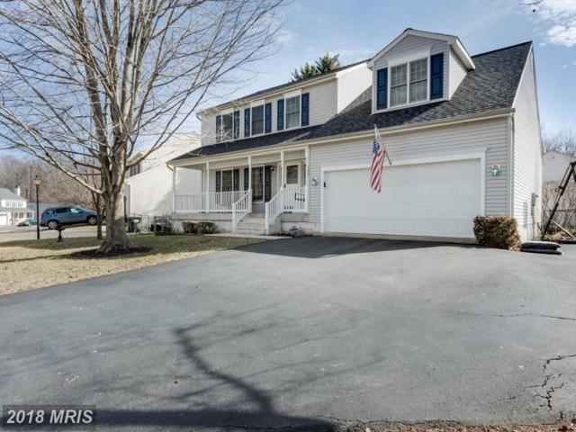 123 Theresa Drive, Stafford, VA 22554 (#ST10160837) :: Advance Realty Bel Air, Inc
