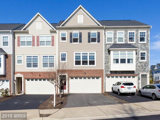 91 Hunting Creek Lane, Stafford, VA 22556 (#ST10162860) :: Wilson Realty Group
