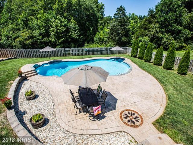1335 Mountain View Road, Stafford, VA 22554 (#ST10163071) :: Wilson Realty Group