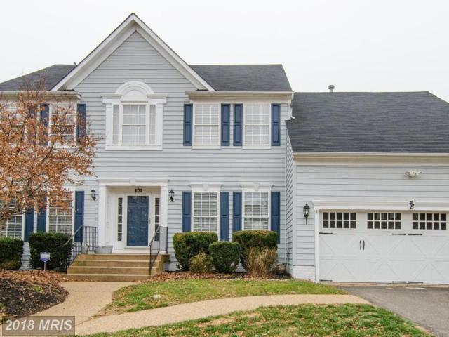 48 Basalt Drive, Fredericksburg, VA 22406 (#ST10170538) :: Keller Williams Pat Hiban Real Estate Group