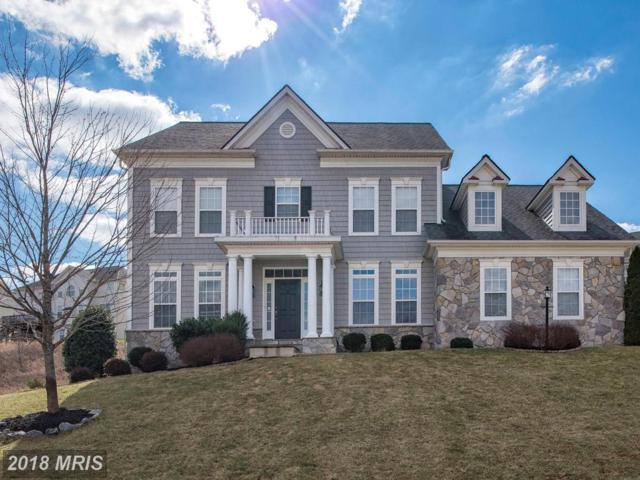 4 Sutton Court, Stafford, VA 22554 (#ST10172187) :: The Gus Anthony Team