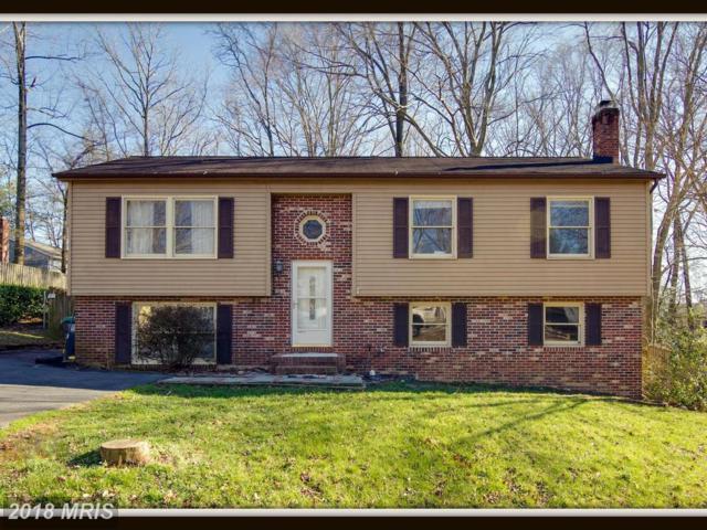 202 Coldspring Drive, Stafford, VA 22554 (#ST10172830) :: Keller Williams Pat Hiban Real Estate Group