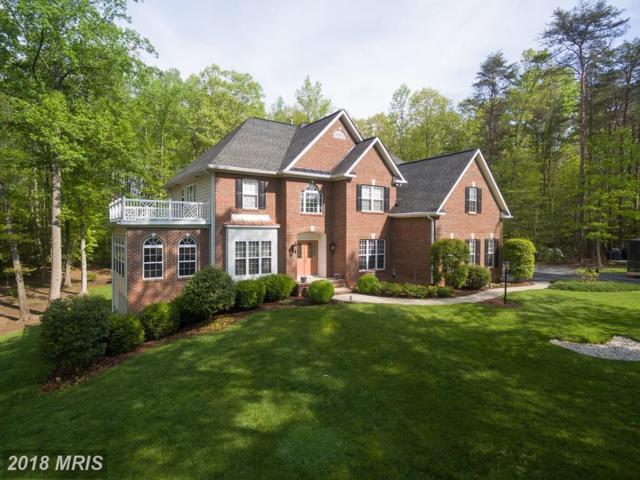 29 Ashburn Lane, Fredericksburg, VA 22406 (#ST10173401) :: RE/MAX Cornerstone Realty