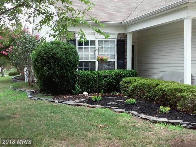 3 Harborton Lane, Fredericksburg, VA 22406 (#ST10178718) :: RE/MAX Cornerstone Realty