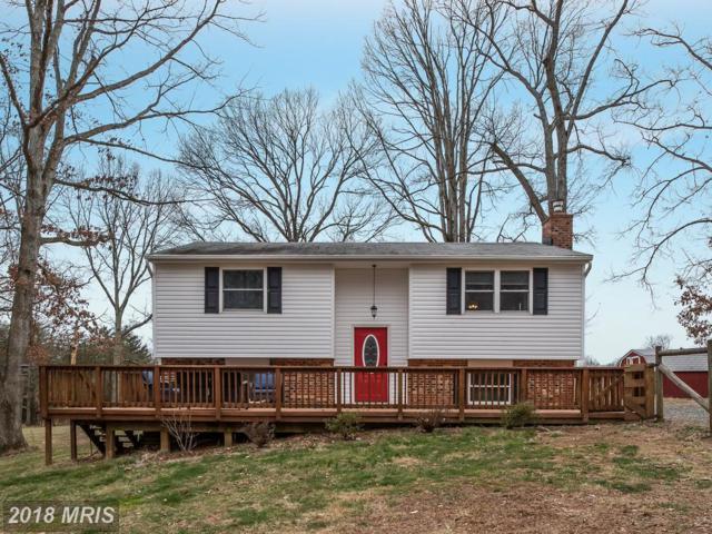38 Fire Trail Lane, Fredericksburg, VA 22406 (#ST10179513) :: RE/MAX Gateway