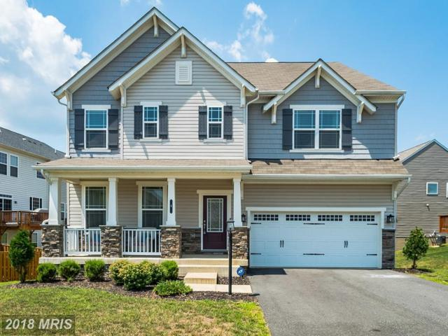 4 Augustine Road, Stafford, VA 22554 (#ST10181858) :: Charis Realty Group