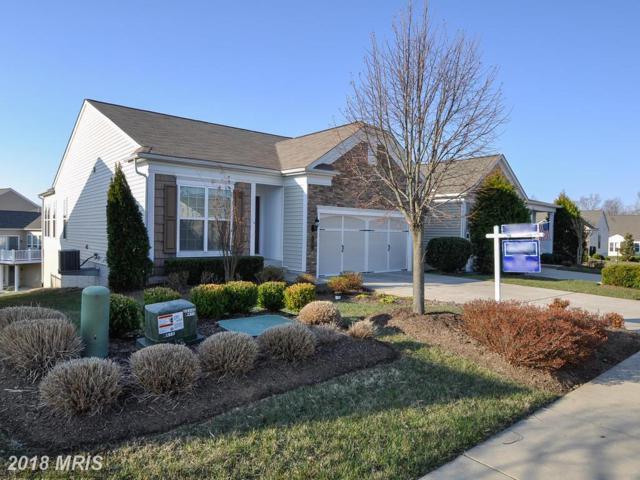 10 Ludington Lane, Fredericksburg, VA 22406 (#ST10182258) :: RE/MAX Cornerstone Realty