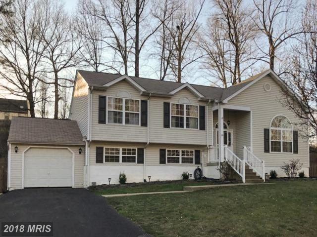 24 Myrtle Road, Fredericksburg, VA 22405 (#ST10184184) :: Bic DeCaro & Associates