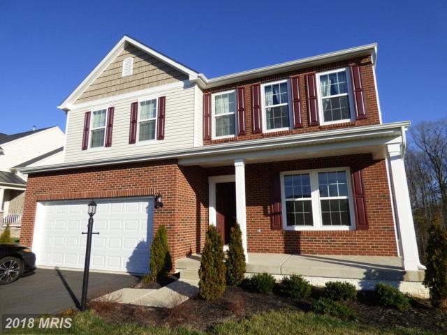 61 Royal Crescent Way, Fredericksburg, VA 22406 (#ST10184785) :: Keller Williams Pat Hiban Real Estate Group