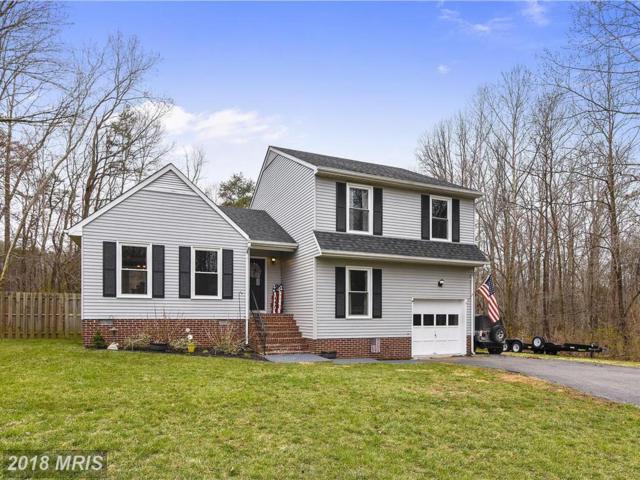 260 Whitsons Run, Stafford, VA 22554 (#ST10189586) :: Keller Williams Pat Hiban Real Estate Group