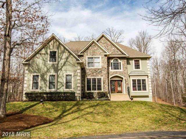 259 Spyglass Lane, Stafford, VA 22556 (#ST10190258) :: Keller Williams Pat Hiban Real Estate Group