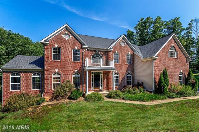 149 Sentinel Ridge Lane, Stafford, VA 22554 (#ST10190667) :: Browning Homes Group