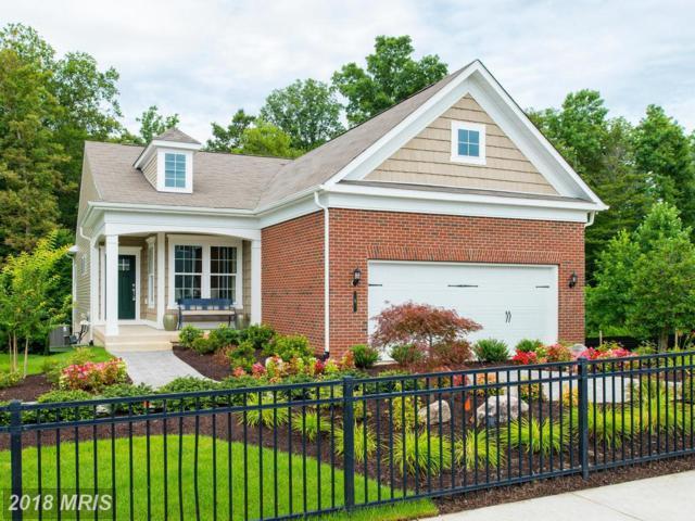 11 Mcquarie Drive #01, Fredericksburg, VA 22406 (#ST10191755) :: Keller Williams Pat Hiban Real Estate Group
