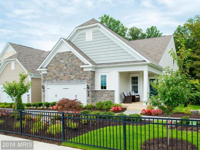 11 Mcquarie Drive #02, Fredericksburg, VA 22406 (#ST10191756) :: Keller Williams Pat Hiban Real Estate Group