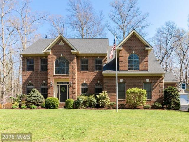 172 Spyglass Lane, Stafford, VA 22556 (#ST10195164) :: Keller Williams Pat Hiban Real Estate Group