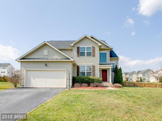 2 Ivy Spring Lane, Fredericksburg, VA 22406 (#ST10198877) :: Keller Williams Pat Hiban Real Estate Group