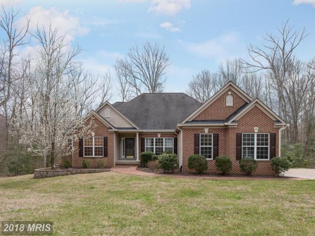 209 Saint Marys Lane, Stafford, VA 22556 (#ST10199224) :: Keller Williams Pat Hiban Real Estate Group