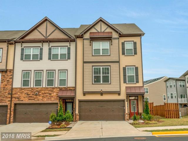 16 Finial Way, Stafford, VA 22554 (#ST10203770) :: Keller Williams Pat Hiban Real Estate Group