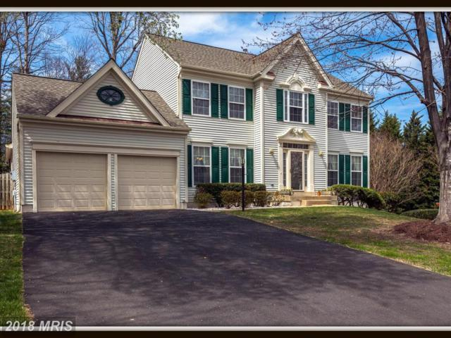 7 Colonel Colin Court, Stafford, VA 22554 (#ST10204281) :: Advance Realty Bel Air, Inc