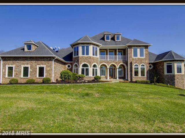 3 Aly Sheba Lane, Stafford, VA 22556 (#ST10208132) :: Browning Homes Group