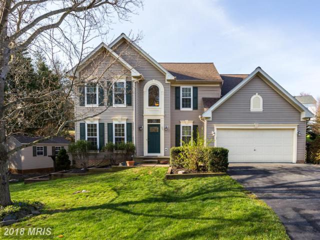 25 Blue Spruce Circle, Stafford, VA 22554 (#ST10208782) :: The Bob & Ronna Group