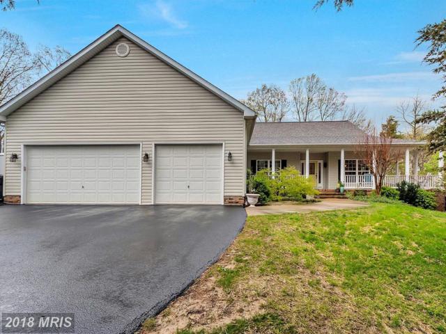 141 Revell Road, Fredericksburg, VA 22405 (#ST10216281) :: Wilson Realty Group