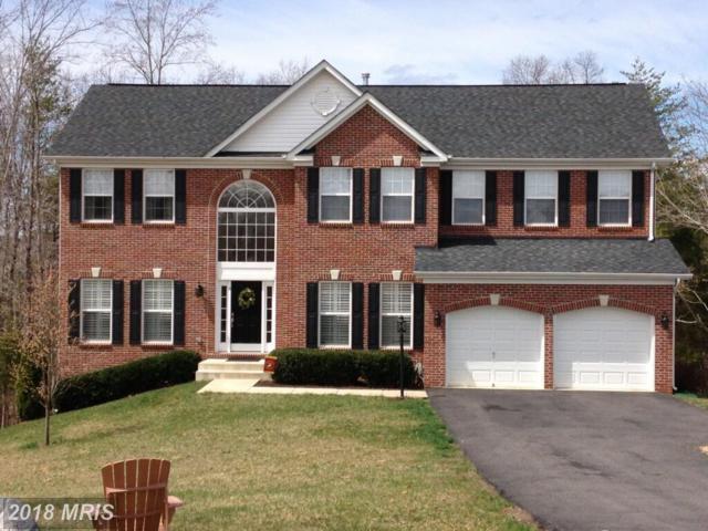 4 Decoy Lane, Stafford, VA 22556 (#ST10216329) :: Wilson Realty Group