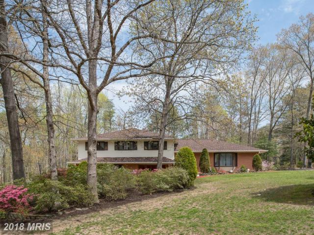 213 Brookewood, Fredericksburg, VA 22405 (#ST10217366) :: Green Tree Realty