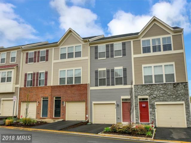 217 Woodstream Circle, Stafford, VA 22556 (#ST10223520) :: Dart Homes
