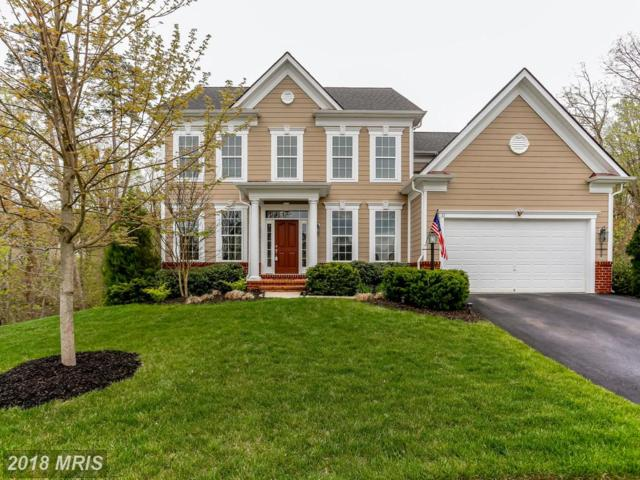 32 Darden Court, Stafford, VA 22554 (#ST10223530) :: The Gus Anthony Team