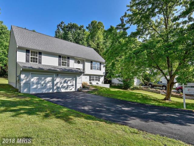 12 Myrtle Road, Fredericksburg, VA 22405 (#ST10231480) :: Green Tree Realty