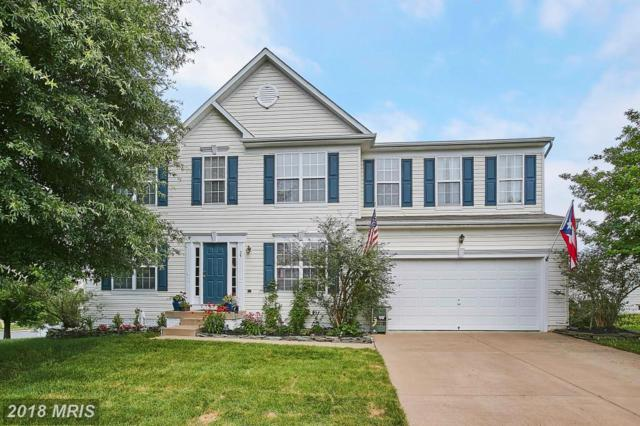 29 Summerfield Lane, Fredericksburg, VA 22405 (MLS #ST10232105) :: Explore Realty Group